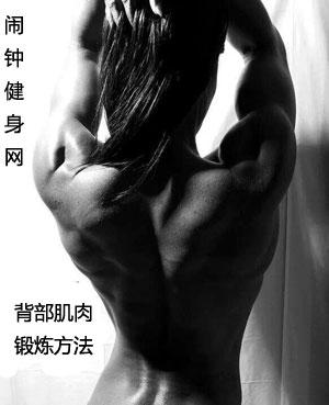背部肌肉锻炼方法大全