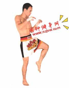 泰拳前后中段前踢练习图解教程