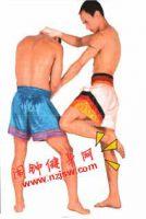 左右刺膝练习的方法—泰拳腿技3