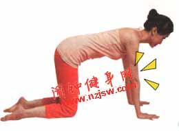 能伸展全身的虎式瑜伽动作该怎么练