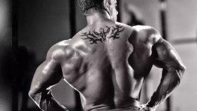 同时提高训练肌肉和力量的锻炼一周计划