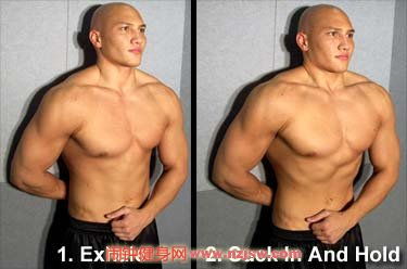 完全无器械锻炼方法,徒手肌肉训练大全www.nzjsw.com