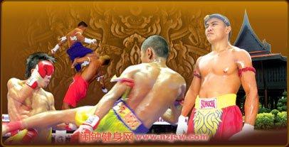 训练和停止泰拳训练对肌由力量的影晌