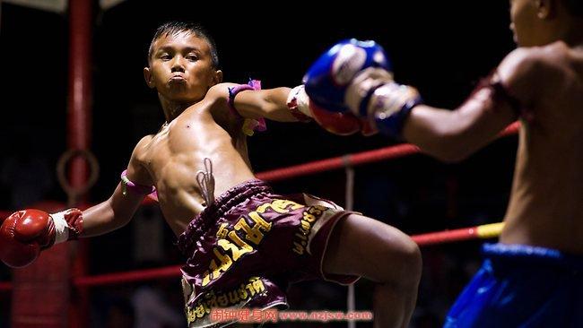 泰拳技术的五大特点是什么